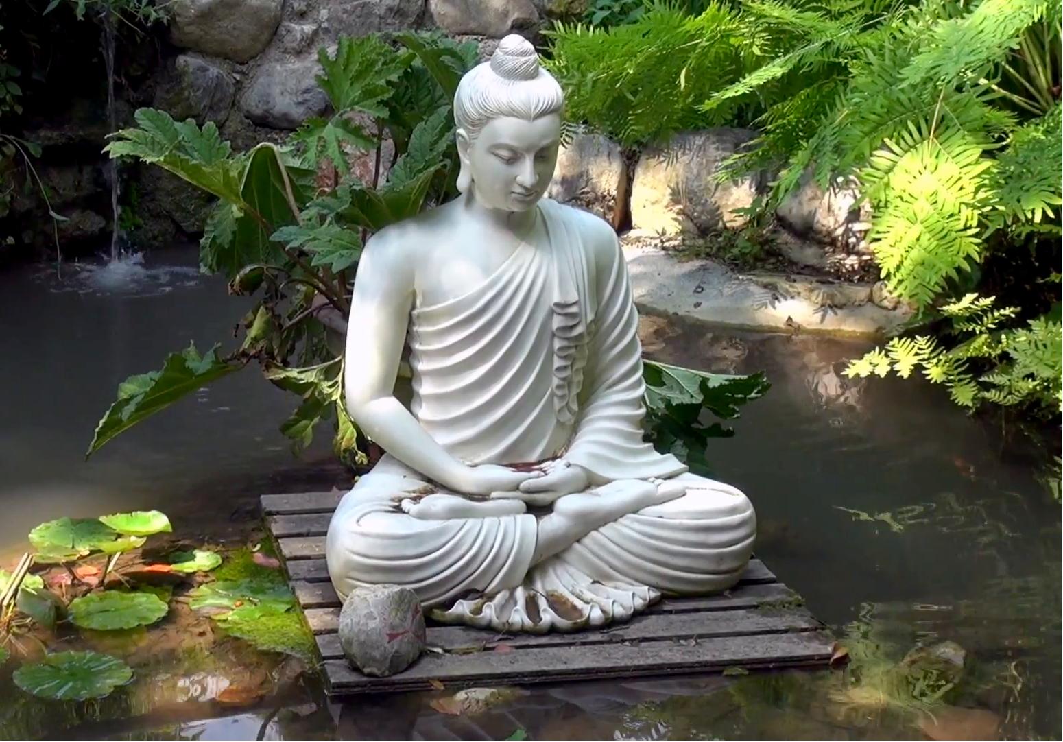 Foredrag, Workshop og Samvær: Indre frigørelse gennem meditation
